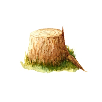 Watercolor hand drawn stump clipart isolated on white background. tree stub illustration for card, poster, sticker, design and decoration.
