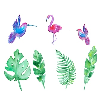 水彩の手描きの熱帯の葉と鳥