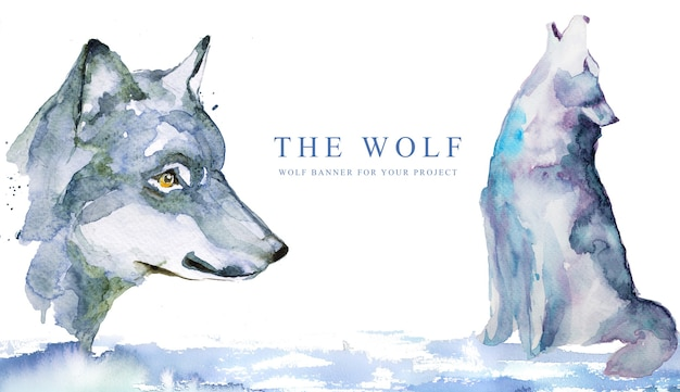 Watercolor hand painted wolf  banner design.