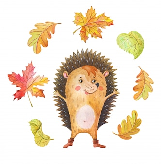 Watercolor hedgehog and autumn leaf fall. one cartoon forest animal on a white background.
