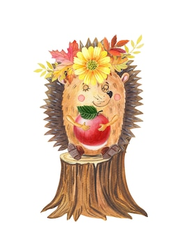Watercolor hedgehog with red apple cartoon forest animal sitting on a stump