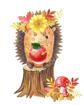 Watercolor hedgehog with red apple on a tree stumpautumn watercolour illustration for baby
