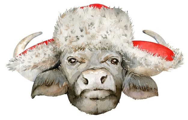 Watercolor illustration of black african buffalo head in christmas fur hat.