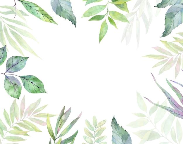수채화 그림. 녹색 잎, 허브 및 가지와 식물 프레임