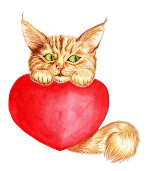 ふわふわのしっぽを持つかわいい生姜子猫の水彩イラスト
