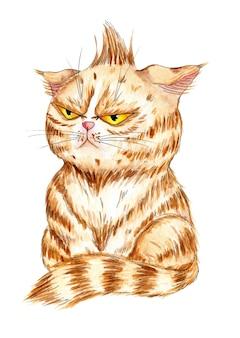 怒っている生姜猫の水彩イラスト不快な大きな黄色い目を持つ子猫
