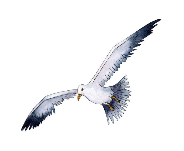 Акварельная иллюстрация реалистичной птицы чайка летние каникулы в море морская жизнь летающая птица