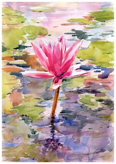 Watercolor illustration painting of lotus