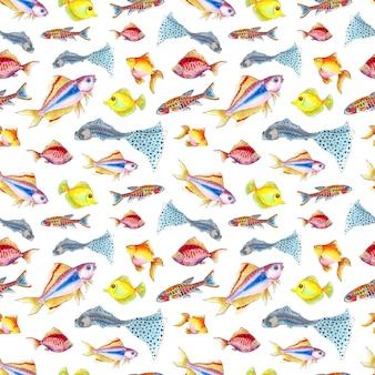 Watercolor illustration pattern of small colorful aquarium fish seamless repeating marine life print