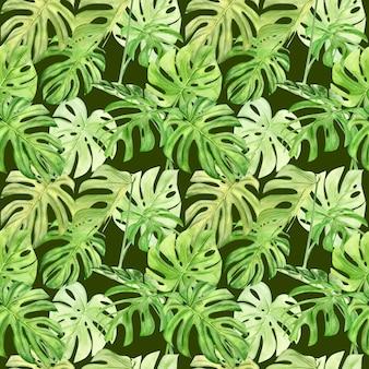 熱帯の葉のモンステラの水彩イラストのシームレスパターン