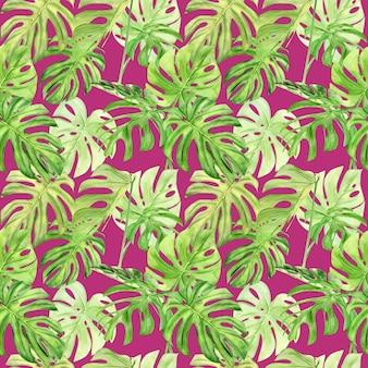 열 대 잎 monstera의 수채화 그림 완벽 한 패턴입니다.