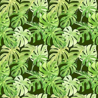 Watercolor illustration seamless pattern of tropical leaf monstera
