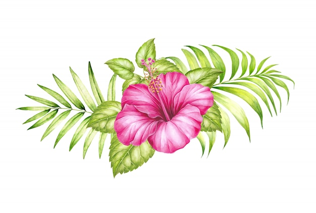 Watercolor illustration of tropical hibickus flower and palm leaves.
