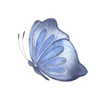 밝은 파란색 나비 추상 여름 나비 고립 된 요소와 수채화 그림