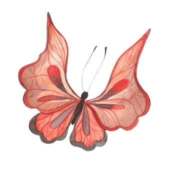 밝은 붉은 나비 추상 여름 나비 고립 된 요소와 수채화 그림