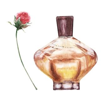 さまざまなバイアルと芳香族の花の水彩イラスト