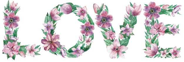 Watercolor illustration of word love made of pink christmas rose flowers.