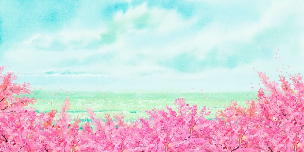 Watercolor landscape painting panorama of cherry blossom trees