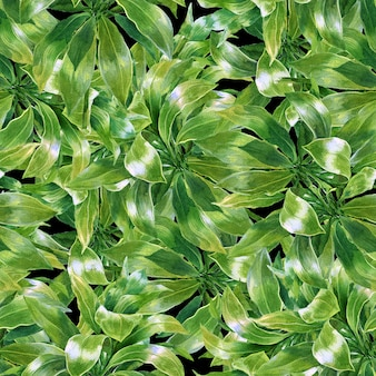 Watercolor leaf seamless pattern on dark background