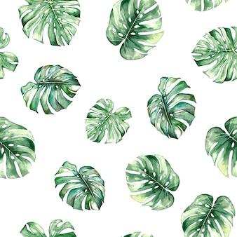 Watercolor monstera tropical leaves seamles pattern isolated