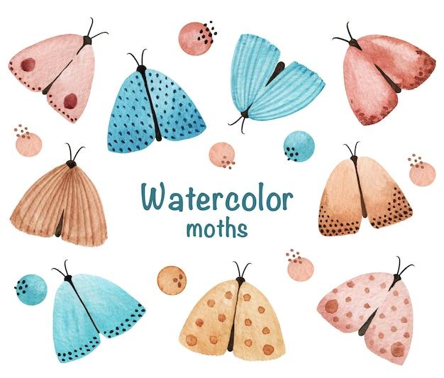 水彩蛾のクリップアート。ジェントルナイトモスセット、ストックイラスト。水彩のヴィンテージ蝶