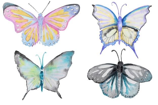 水彩の多色蝶セット白で分離