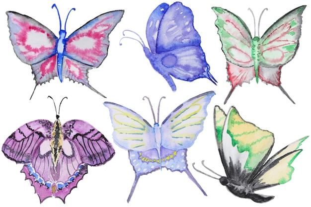 Watercolor multicolor butterflies set isolated on white