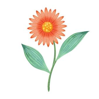 水彩オレンジの花