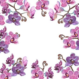 Акварельные ветви орхидеи, изолированные на белой поверхности