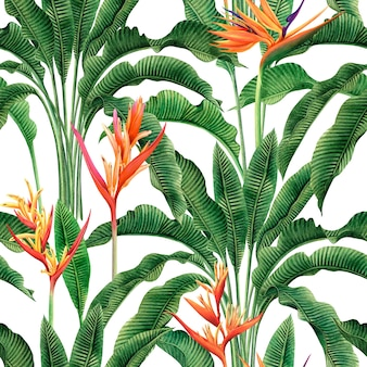 楽園の花の水彩画の鳥、カラフルなシームレスパターン。