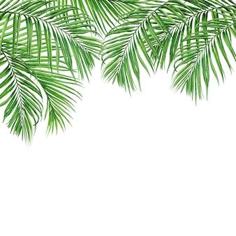 水彩画ココナッツの葉熱帯パターン