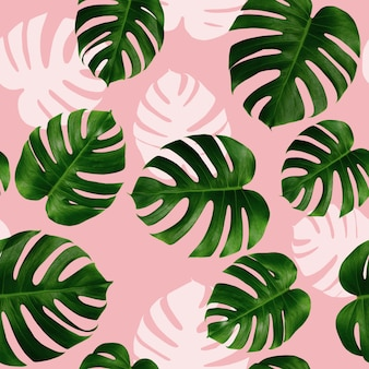 Watercolor painting colorful tropical monstera leaves seamless pattern