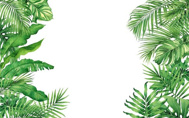 Акварельная живопись зеленые тропические листья бесшовный фон фон.