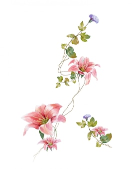 Watercolor painting of leaves and flower, on white