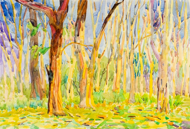 Watercolor painting original landscape colorful of garden forest tree in autumn season with nature
