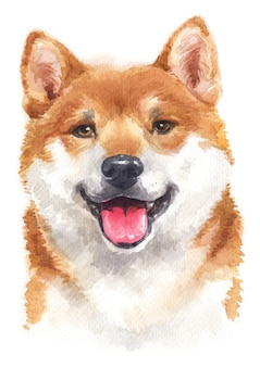 Watercolor painting of shiba inu