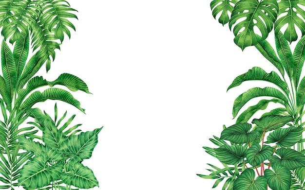 水彩画熱帯の葉のパターン。