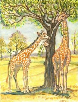 水彩パステル手描きキリン家族アフリカの木からの2匹の動物の母親の赤ちゃんキリン