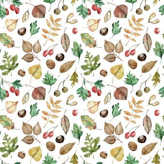 Watercolor pattern of autumn leaves and berries
