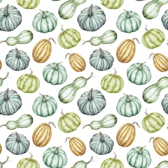 Watercolor pattern of colorful pumpkins. autumn background. thanksgiving, halloween botanical illustration.