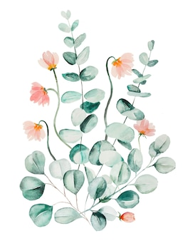 Watercolor pink flowers and green eucalyptus leaves bouquet illustration isolated
