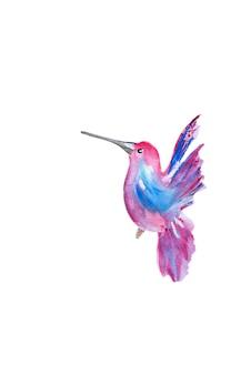Акварель розовый колибри