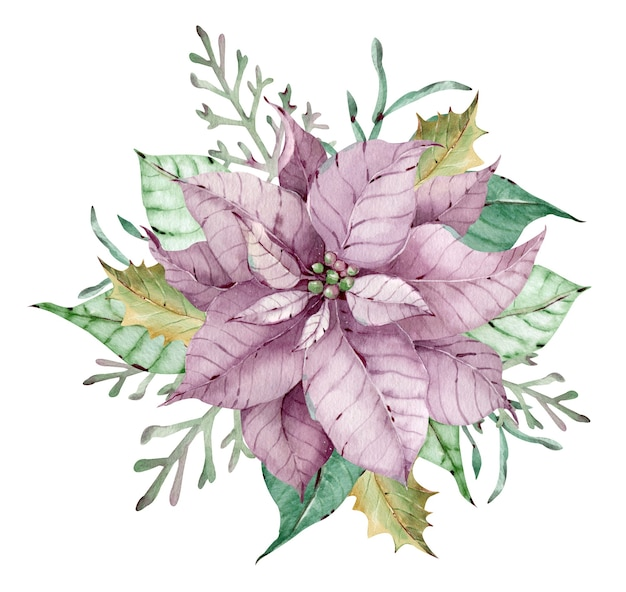 Watercolor pink poinsettia flower with green leaves and branches. christmas composition. new year's floral card. hand-drawn illustration isolated on the white background.