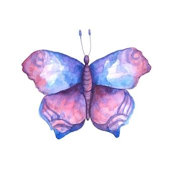 수채화 분홍색, 보라색 및 파란색 나비 그림입니다. 비행 곤충 클립 아트 흰색 배경에 고립입니다. 나비 카드, 초대장, 포스터, 파인트, 승화, 디자인 및 장식.