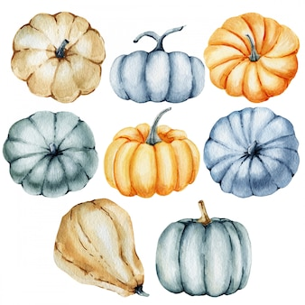 Watercolor pumpkin set