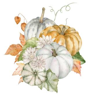 水彩のカボチャとアスター。感謝祭の手配。収穫の概念。手描きイラスト