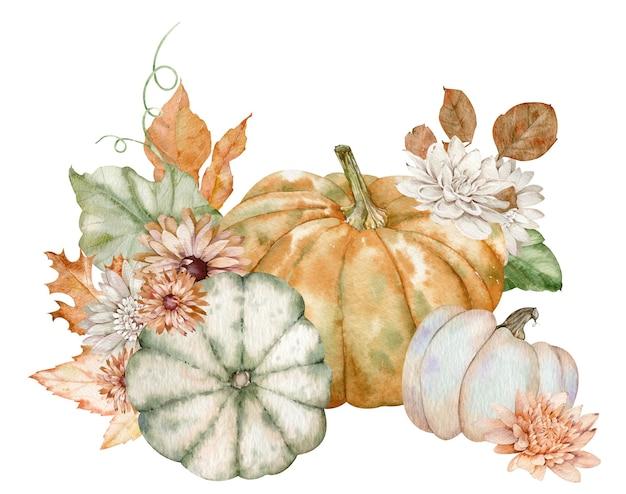 水彩カボチャと秋の花。感謝祭の休日の手配。収穫の概念。白い背景で隔離の手描きイラスト。