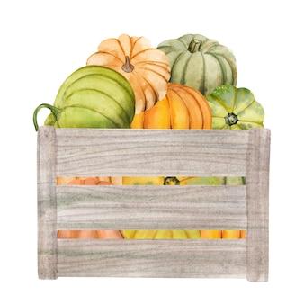 Акварельные тыквы в коробке хэллоуин иллюстрации набор урожай благодарения осенние элементы дизайна фа ...