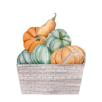 ボックス内の水彩カボチャ、ハロウィーンのイラストセット、収穫、感謝祭の秋のデザイン要素、秋、白い背景で隔離の休日のクリップアート。