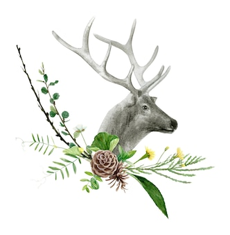 Акварель реалистичный олень лесное животное, изолированные на белом фоне иллюстрации.